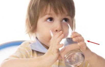 7 Manfaat Minum Air Putih Serta Pentingnya Bagi Kesehatan Tubuh Manusia